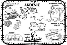 Türkiye&Bölgeler