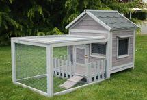 mini mini maison pour animaux trop mignon