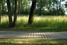Landschaps_referenties