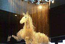 Cheval / Equitation