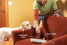 DIY house cleaning/home remidies / by Rachel Bequette