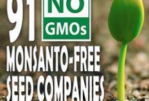 Heirloom and GMO free FOOD SEEDS