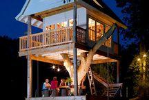 House ~ tree house