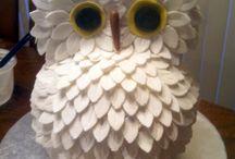 Owls / Nature