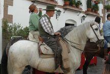Fiesta de San Anton 17 de enero / Fiesta Singular Malaga, San Anton en Canillas de Albaida, 17 de enero