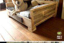 Hundetegn