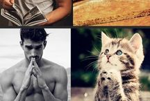 kitttys