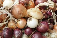 Onions! / Onions, onions, and more onions!