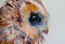 cute owls / awesoome