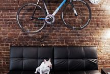 Bikes / by Josh Maxwell