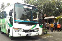 Sewa Bus Wonosobo / Sewa Bus Pariwisata di Wonosobo