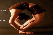 Yoga Center @ Adhyatm Sadhna Kendra / Website: www.askpreksha.com   Mail:  askdelhipm@gmail.com   Contact No. : 011 2680 2708, 2671