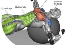 chest dumbbell flyes on stability ball