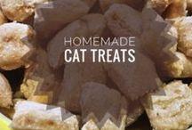 Pets / Adorable costume treats!