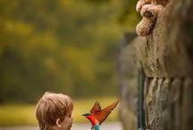 birds & animal