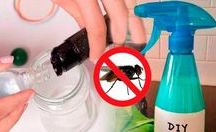matar moscas