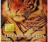 This MasterCard paid you. /  Change your CARD. Change your life.  THIS DRBIT CARD PAY FOR YOU !! 12 Ways To Earn Extra Income.