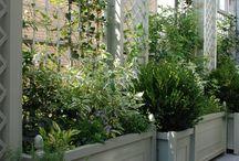 garden / treillis terrace balcony