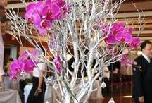 Wedding: Orchids
