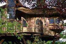 Magical Tree Houses