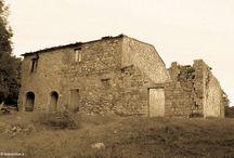 Mommialla Tuscany