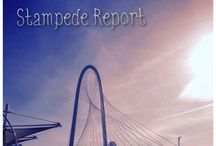 Stampede Reports / Race Recaps / by Back of the Stampede