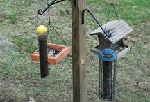 Bird Feeding Station Diy