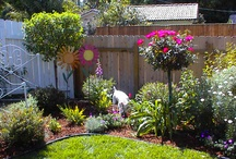 Lawn and Garden / by Susan Soureal-Hart