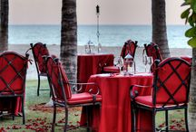 Dining  Under the Stars / by Acqualina Resort & Spa on the Beach