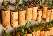 Unusual Garden Ideas