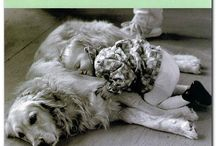 Sweet Doggies / by Gail Carr