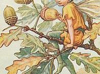 the only Real flower fairies - collection Cecile Mary Barker, part also as x-stitch pattern for share / Flower Fairies - collection Cecile Mary Barker.  Part of these already also as original digital crosstitch patterns availeable for sharing. crosstitch patterns from several brands also.