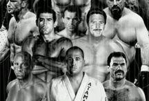Ufc / UFC