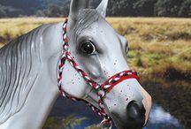 pony halters