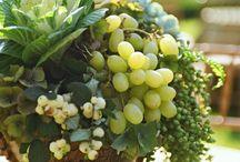 Vege and fruits arrangements