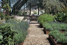Gardening, Gardens and Yards
