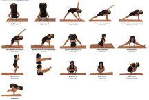 Exercise - Yoga / by Jennifer Hodges