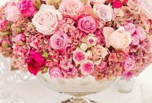 Kvety a príroda