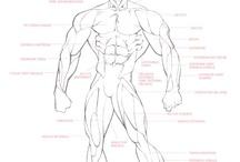Refs - Body