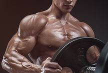 Best Muscle Workouts for Men / Best Muscle Workouts for Men, Muscle building protein supplement is specifically formulated to support energy levels, performance and overall health to assist Muscle workouts for men.