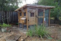 Chicken Coops / Neat chicken coops around the web