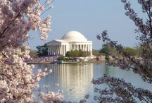 wedding: washington dc. / Here's what you need to know to plan your wedding day in our Nation's US Capitol.