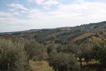 Bell' Abruzzo