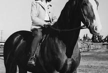 Legend of Horse