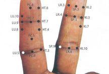 meridiamy prstu leve ruky