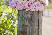 My favourite flower- Peony