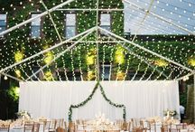 Terrific Tents! / Beautiful tent weddings and details for an lush outdoor affair!