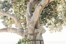 Maui Wedding Arch Ideas / wedding arch ideas for the modern bride