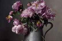martwa natura i kwiaty