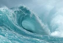 Surf Beauty / by Ellen Carter, Broker